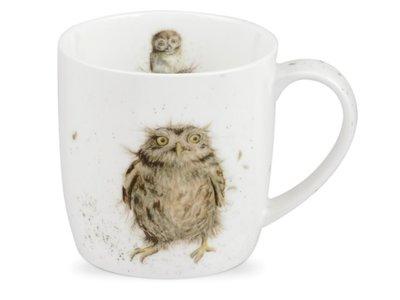 Royal Worcester Wrendale - What a Hoot Mug