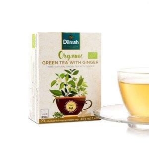 Dilmah Organic Green Mint
